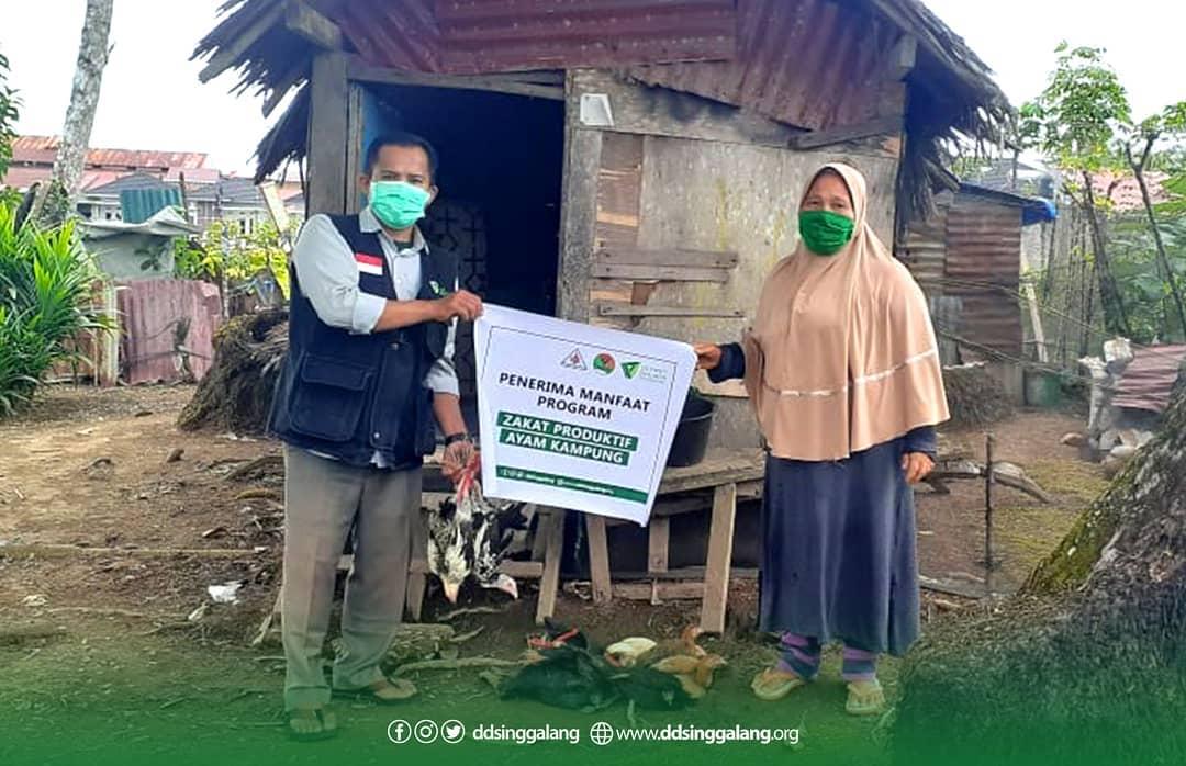 Penyerahan Zakat Produktif untuk Bu Rosna  Berupa Ayam Kampung